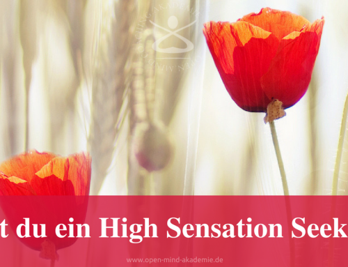 High Sensation Seeker oder ein Scanner: Was bist du?