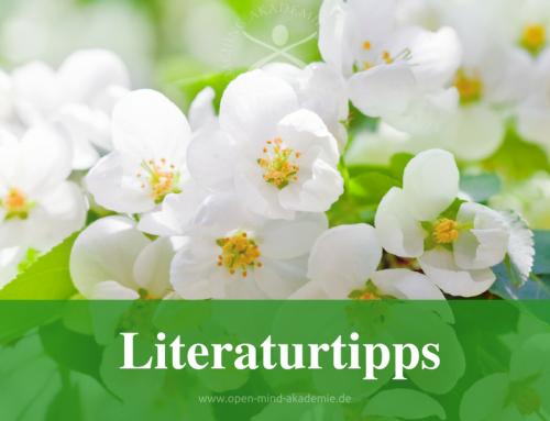 Literatur: Unsere Leseempfehlungen