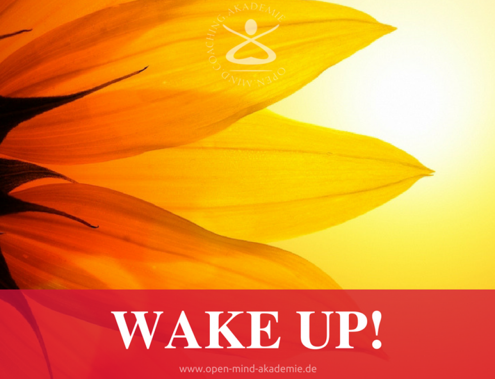 Wake Up: Dier vier Kerzen