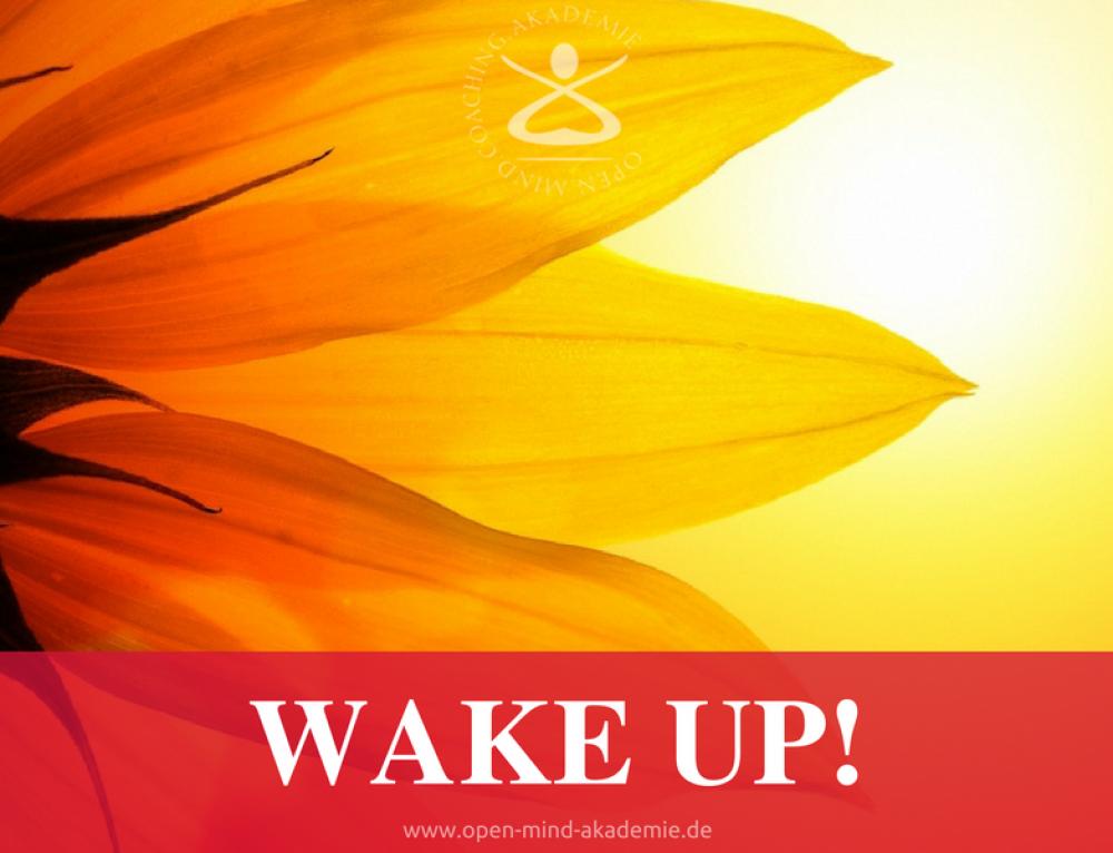 Wake up: Die drei Siebe