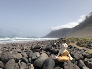 Bodhi am Strand in Famara