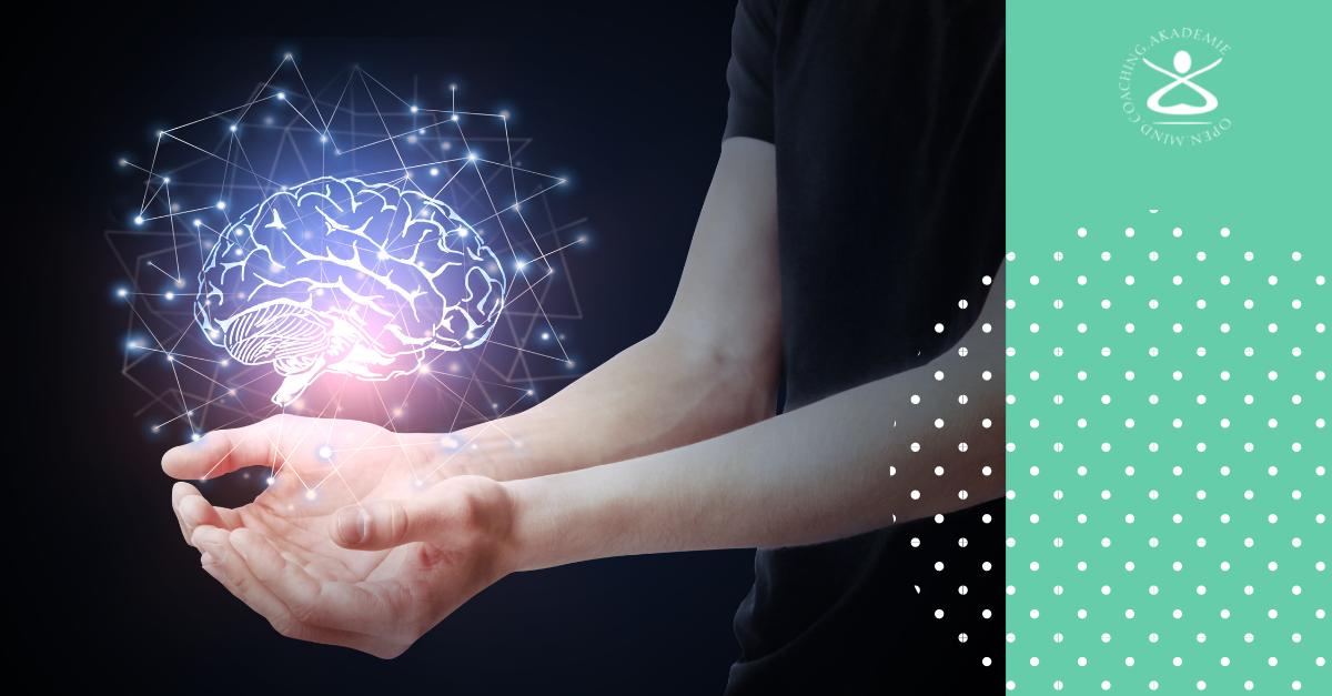 Zwei spannende Intelligenzformen: Kristalline und fluide Intelligenz.