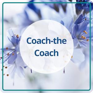 Das Coaching für erfolgreiche Menschenbegleiter: Positionierung, Marketing und Erfolgsstrategien
