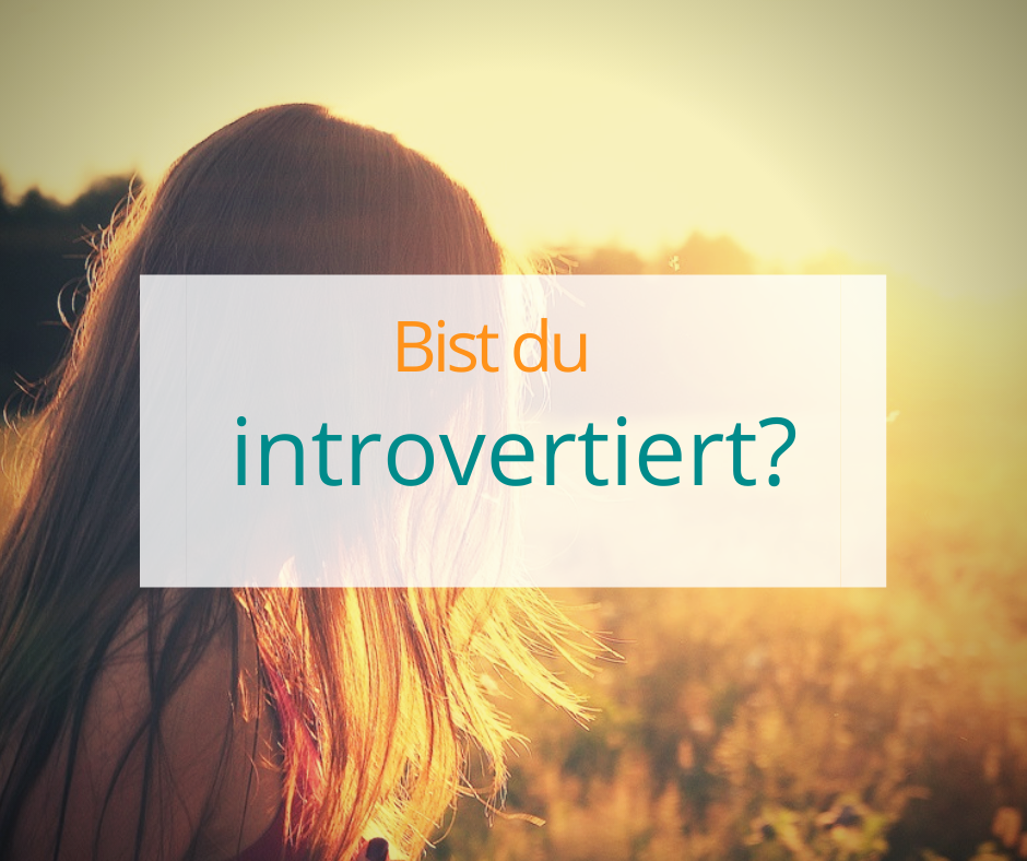 Test Introvertiert