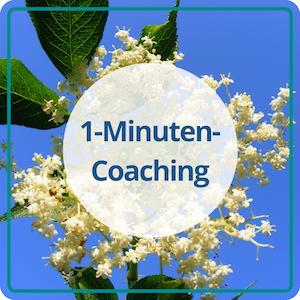 Das 1-Minuten-Coaching