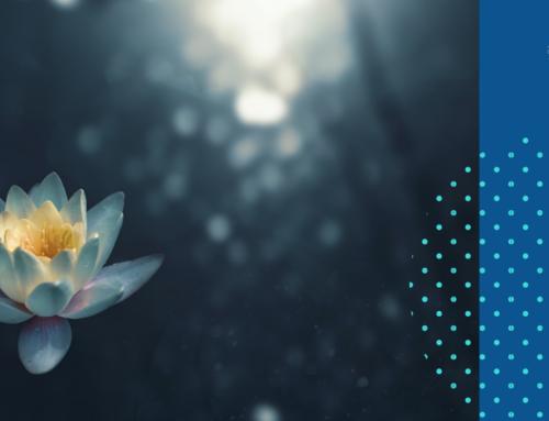 Der Lotuseffekt für Gefühle, die du nicht haben willst