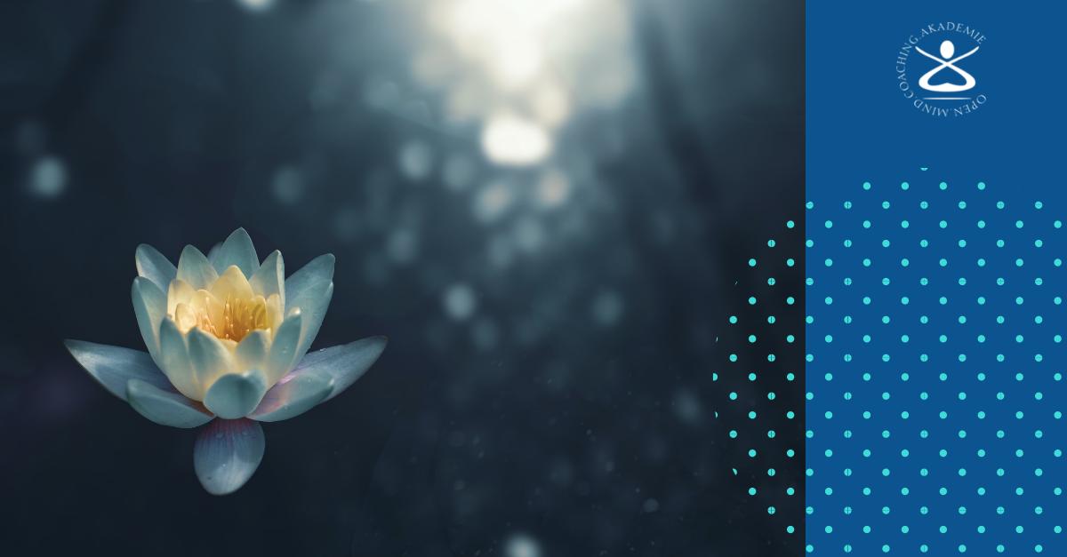 Lotuseffekt für Gefühle