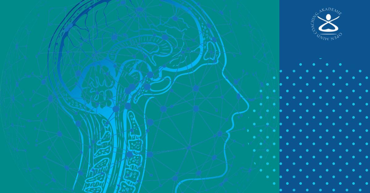 Metakognitives Coaching: Vermeide kognitive Dissonanz?